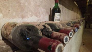 vin-millesime